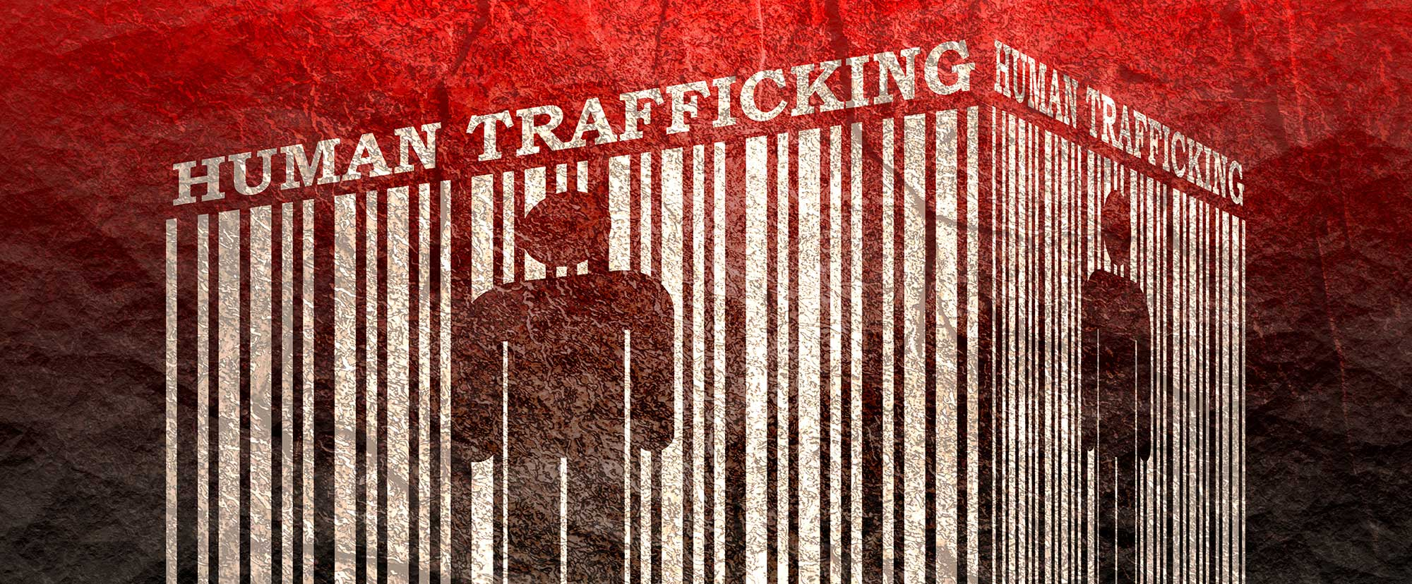 human trafficking supply chain